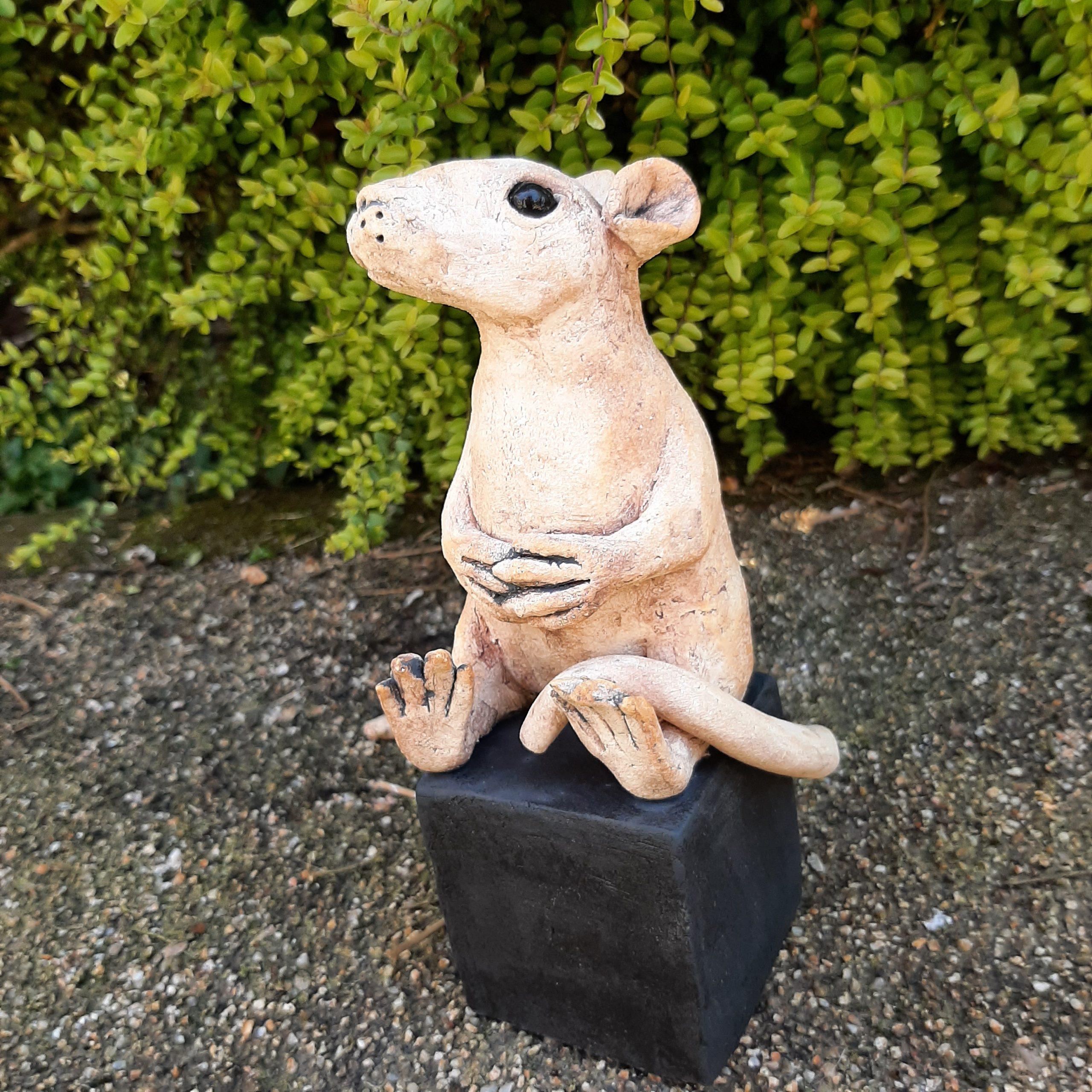 Sandra Bidmead rat